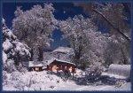 snowmoon5x7card.jpg