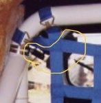 A620FF63-9179-4DC5-99FB-8AEC1BFE030E.jpeg